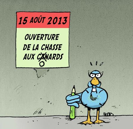 Chasse canards