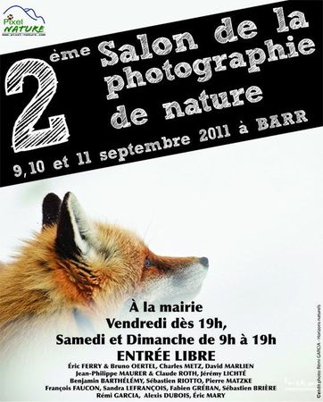 affiche-2eme_Salon-BLOG