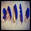 Boucle d'oreille : plumes de perroquet