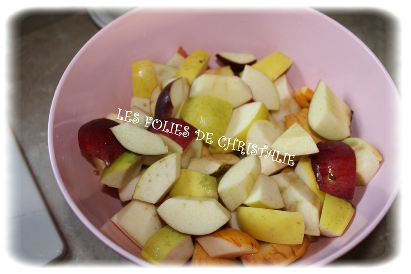 Gelée de pommes 1