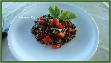 salade_de_lentilles_aux_oignons_rouges1