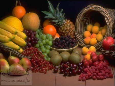 www_sunna_info_186