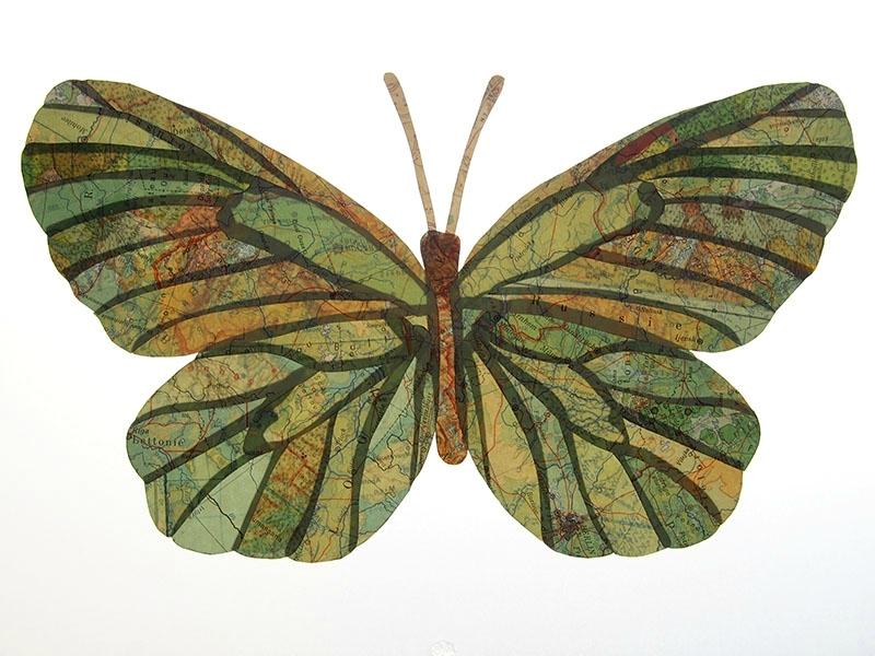 3755 papillon