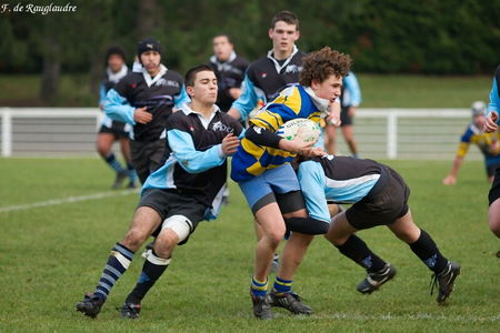40IMG_0487T