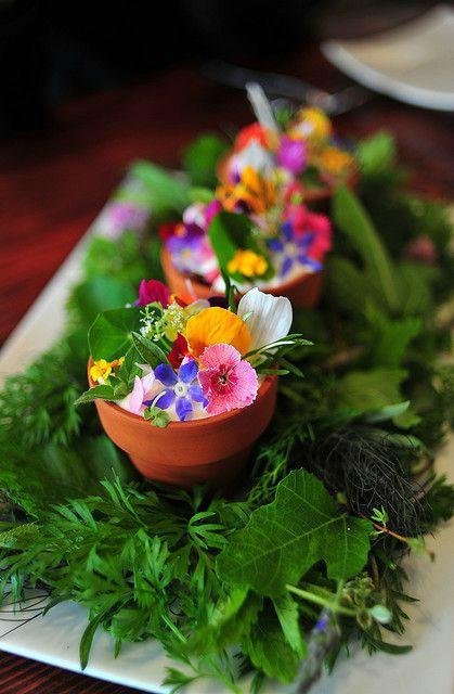 Salade enchantée <3