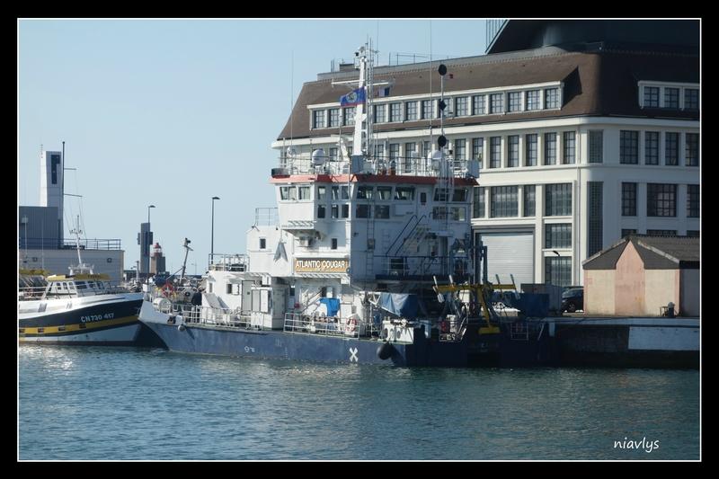 le navire de recherche atlantic cougar photos du havre du port et de sa r gion. Black Bedroom Furniture Sets. Home Design Ideas