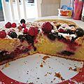 Gâteau moelleux aux fruits rouges