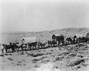 Donner Party Wagons