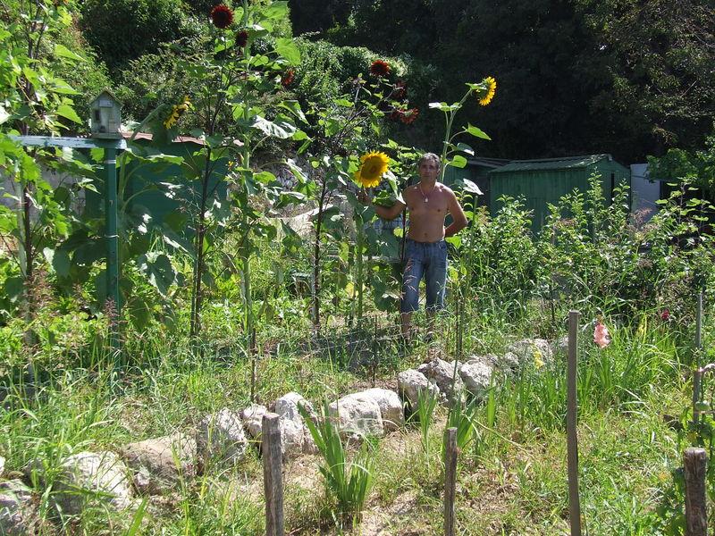 Cuicui13013 jardin ouvrier du castellas marseille for Jardin ouvrier