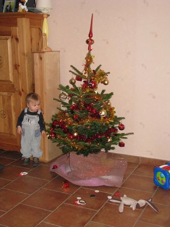 Th_o_Tim_et_le_sapin