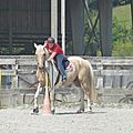 Jeux équestres manchots 2013 (268)