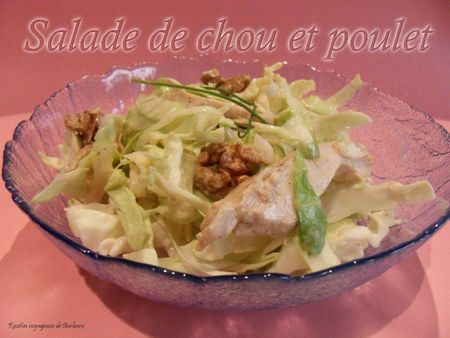 salade de chou et poulet recettes voyageuses de barbara. Black Bedroom Furniture Sets. Home Design Ideas