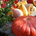 C'est la fête de l'automne !