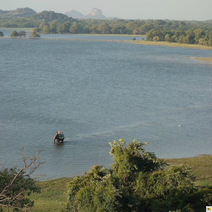 Hertitance Kandalama (11)