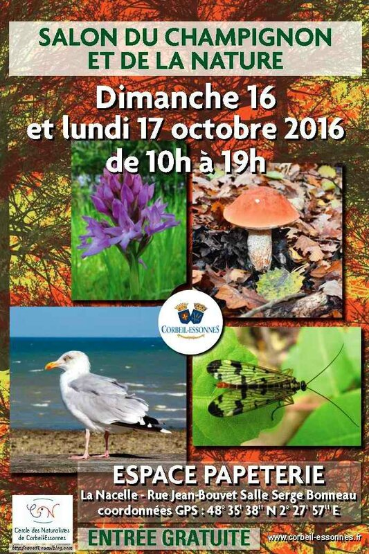 Affiche CNCE Expo champi 2016