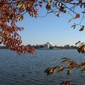 Jefferson Memorial - Tidal Bassin 3
