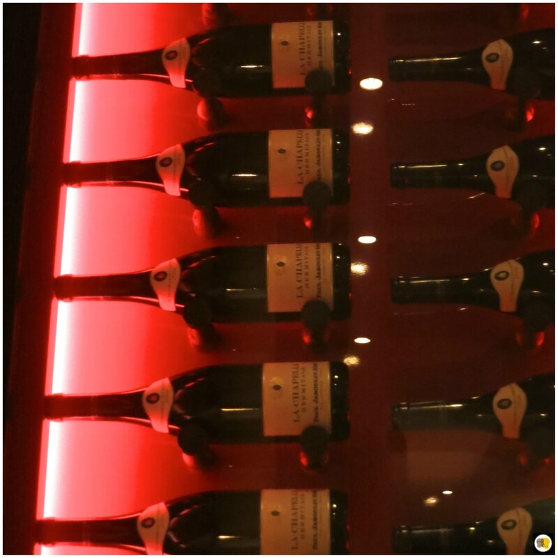il Vino (2)
