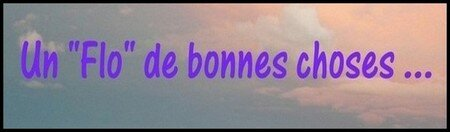 Un_Flo_de_bonnes_choses