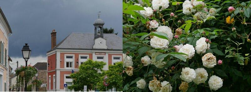 ciel gris roses fanées