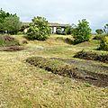 Potager en permaculture 3e partie et jardinage divers