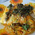 Pavés de saumon tiède et sa vinaigrette relevée