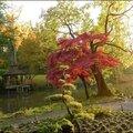 2012_11_11-POM-P1140643
