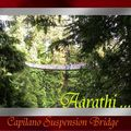 Capilano suspension bridge, vancouver.