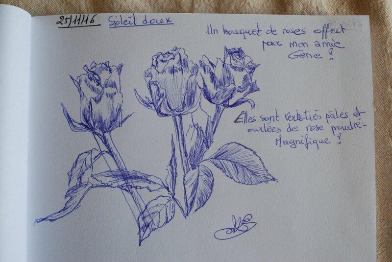 27nov16 (1)