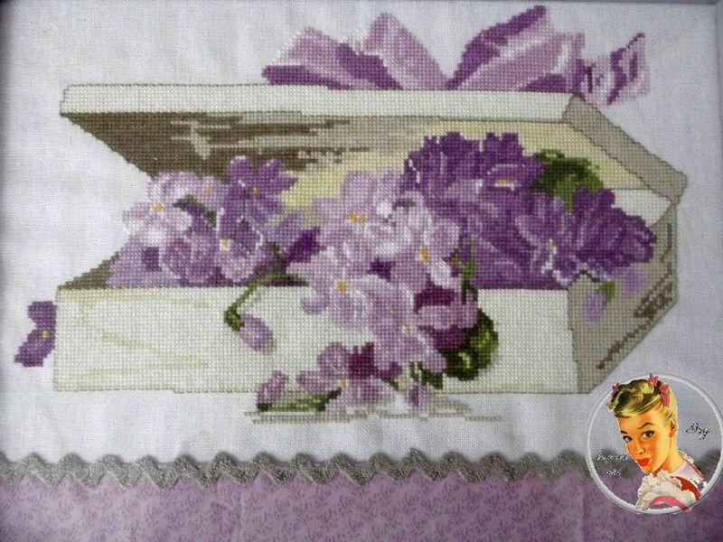 boite violette
