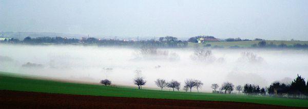 Viville brouillard (1)