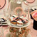 Pink_Ladies10