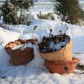 Jardin dh'iver #2# - neige