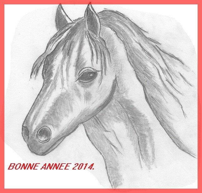 cheval 2B 001