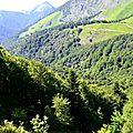 Camins e peishedèrs deu Malh-Arroi e deu Lajens.