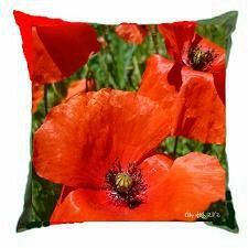 coussin coquelicots Pf