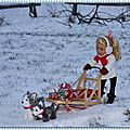 Meredith et son traîneau à chiens - meredith and her dog sled