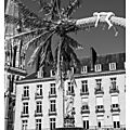 Le voyage à nantes et ses palmiers place royale