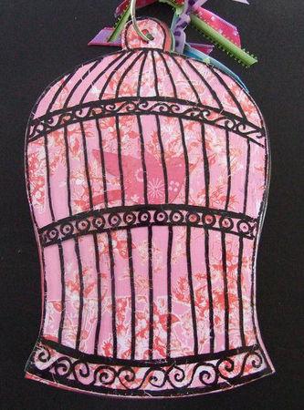 album_cage___oiseaux_017