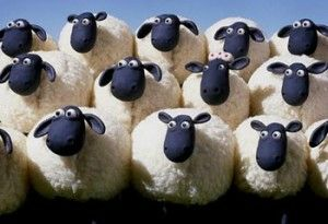 moutons1