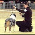 Expo canine à bourg en bresse