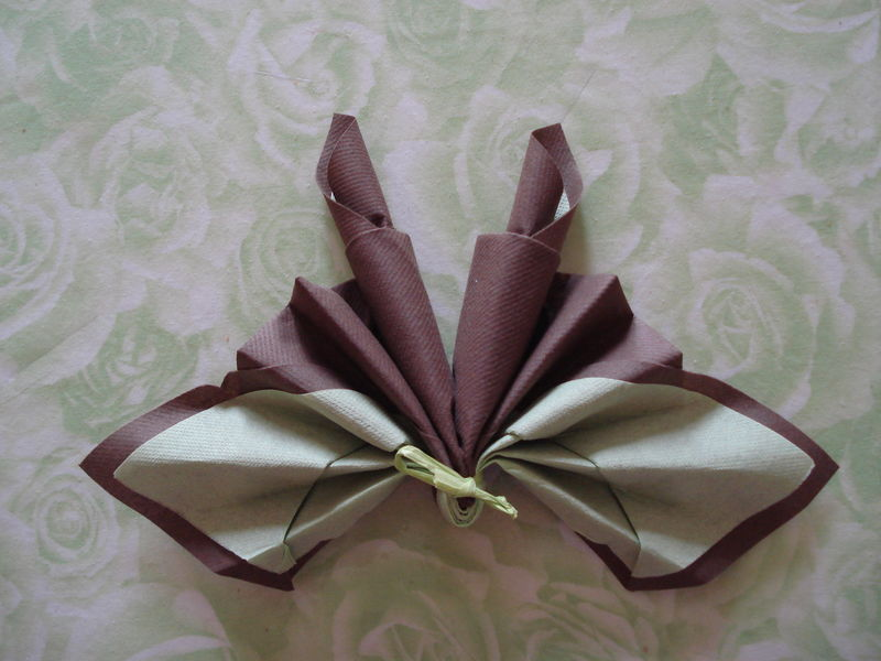 Pliage serviettes papier 2 couleurs dark brown hairs for Pliage de serviette en papier 2 couleurs facile