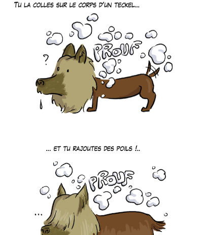 chiens3