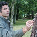 7) Serge DALL'ASEN 2008