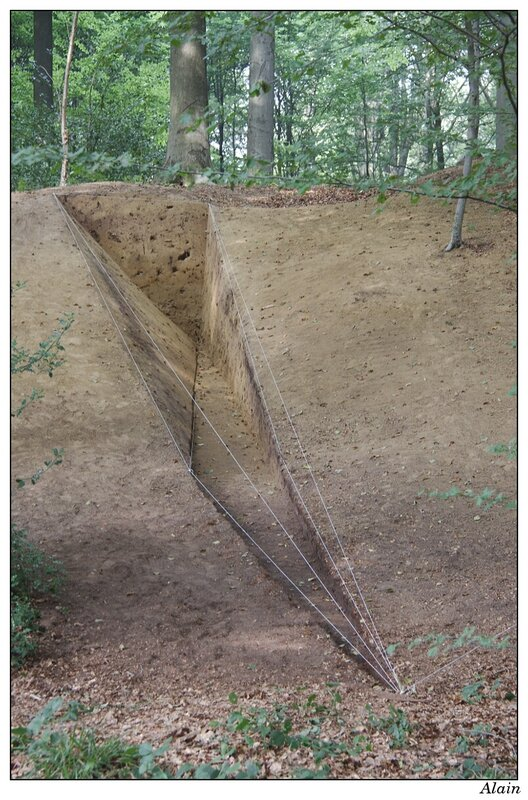 Land-Art dans le bois de Ligne