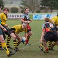 66IMG_0540T