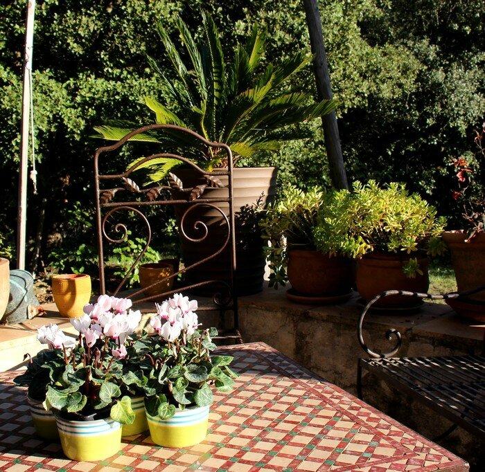 16-10-30--jardi d'automne--A700
