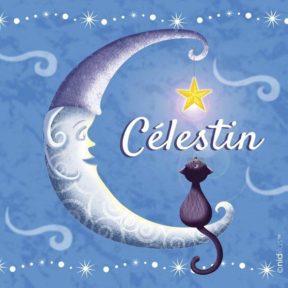 nidillus-lune et chat 72 prenom