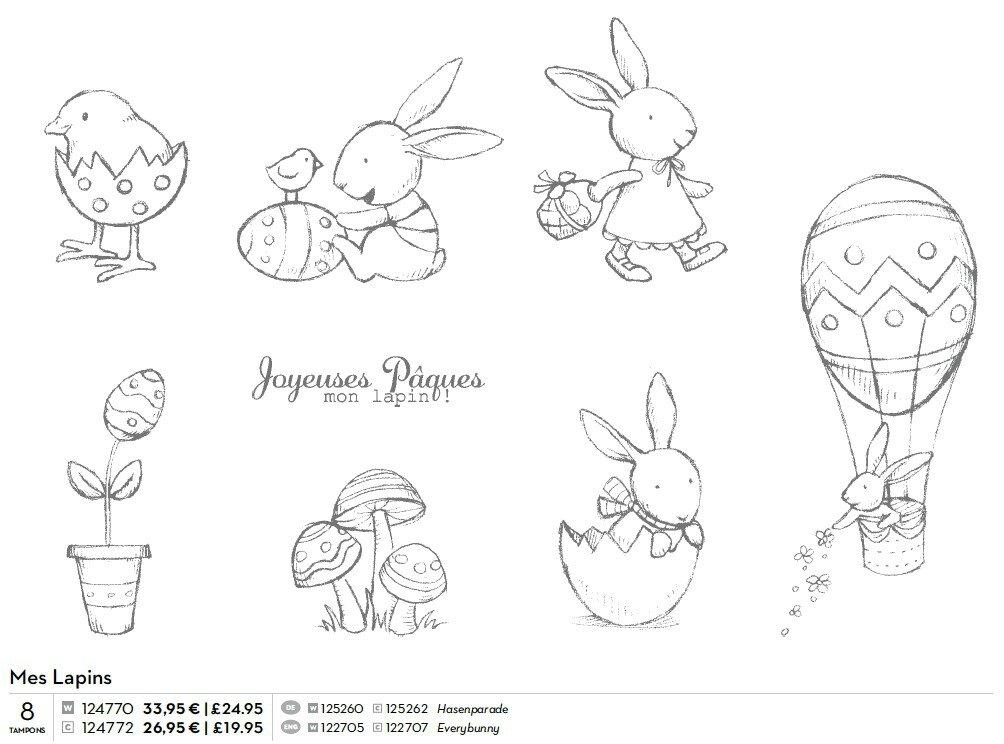 p025 mes lapins