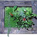 Tableau végétalisé les plantes sont fixées sur un