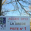 Protection de la forêt